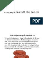 Công nghệ sản xuất nấm linh chi.pptx