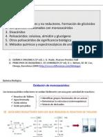 LECCION 5_Glucidos y glicobiologia III  2013 Alumnos.pdf