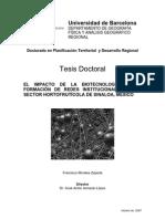 Tesis Dr Impacto Biotecnologia en La Formacion de Redes Institucionales en El Sector Hortofrticola en Sinaloa