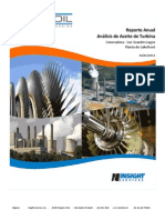 Turbine report-SPAN.pdf