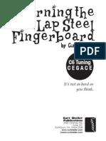 Learning the Lap Steel Fingerboard