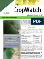Adelaide Hills Crop Watch 111209