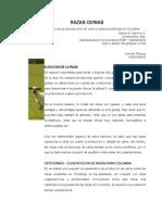 Algunas razas colombia.pdf