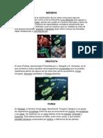 MÓNERA concepto e imagen.docx