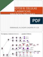 Linfocitos B, células plasmáticas, inmunoglobulinas..pptx
