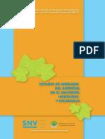 estudio_de_mercado_de_biodiesel_en_el_salvador_honduras_and_nicaragua.pdf