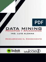data-mining-principios-y-aplicaciones.pdf