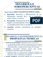 T3_DESARROLLO_SENSORIOPERCEPTUAL.ppt