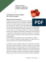 6 Guia de Tomate 2013