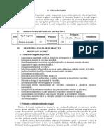 curricula practica de licenta (6).doc