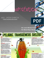 TRANSGÉNICOS-E.ppt