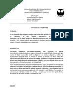 PRACTICA EFICIENCIA DE UNA BOMBA  3.docx