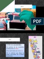 qPCR.pdf