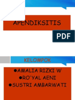 APENDIK 2.ppt