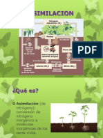 desarrollosustentable.pptx