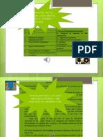 Instrucciones_Ejercicios.pptx