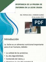Pruebas_Plataforma_LecheCruda (1).pdf