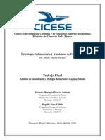 Subsidencia.pdf