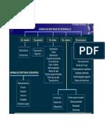 anomalas dentarias del desarrollo.pdf