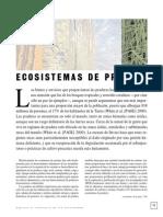 de-pradera.pdf