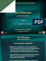 cor_pulmonale_parte_i.ppt
