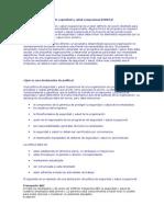 OSHAS - MARCO CONCEPTUAL.doc