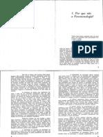 AUGRAS, o ser da compreens - cap 1 ao 5.pdf
