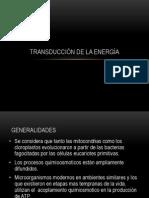 Transduccion_de_la_Energia_c.pdf
