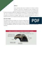 CICLO DE VIDA DEL NEUMÁTICO.docx