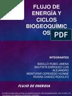 Flujo de energía y ciclos biogeoquímicos.pptx