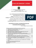 Identidade em contrução.pdf