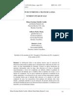Absorcion de nutrientes por las hojas.pdf