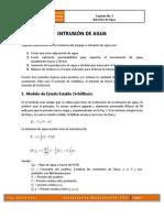Capitulo 3 - Intrusion de Agua.pdf