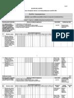 Plan de actiuni SRSJ 2011-2016.doc