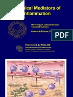 Chem Mediators Inflammation