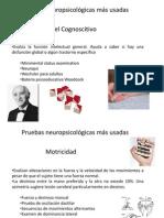 V-b psicobiologiadiapos.pptx