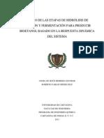 DISEÑO DE LAS ETAPAS DE HIDRÓLISIS DE ALMIDÓN Y FERMENTACIÓN PARA PRODUCIR BIOETANOL BASADO EN LA.pdf