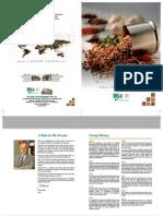 BSA Brochure 2011