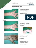 Hand 2010[1].pdf
