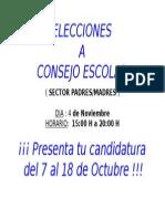 CARTEL ELECCIONES.doc