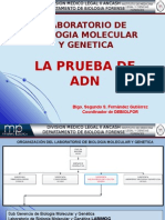 Presentacion ADN.odp