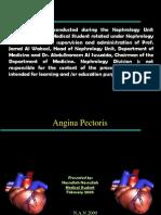angina pectoris-101111112