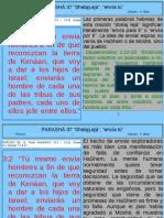 Parasha 37 Shelajleja.pdf
