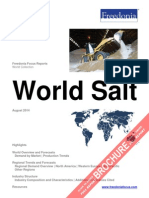 World Salt