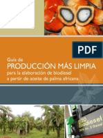 pml_biodiesel.pdf