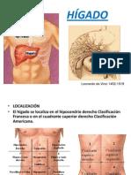 HIGADO anatomía.ppt