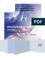 JHON PORTAOFLIO. UNIDADES BIOLOGIA MOLECULAR.doc.docx