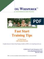 Fast Start Training Tips