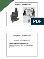 vigilancia_gravidez.pdf