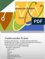 CH17 Cardiovascular Assessment _ Nk07